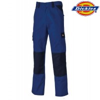 Dickies Hose marine/royal