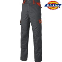 Dickies Hose orange/grau